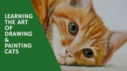 Learning the Art of Drawing and Painting Cats – Book Review